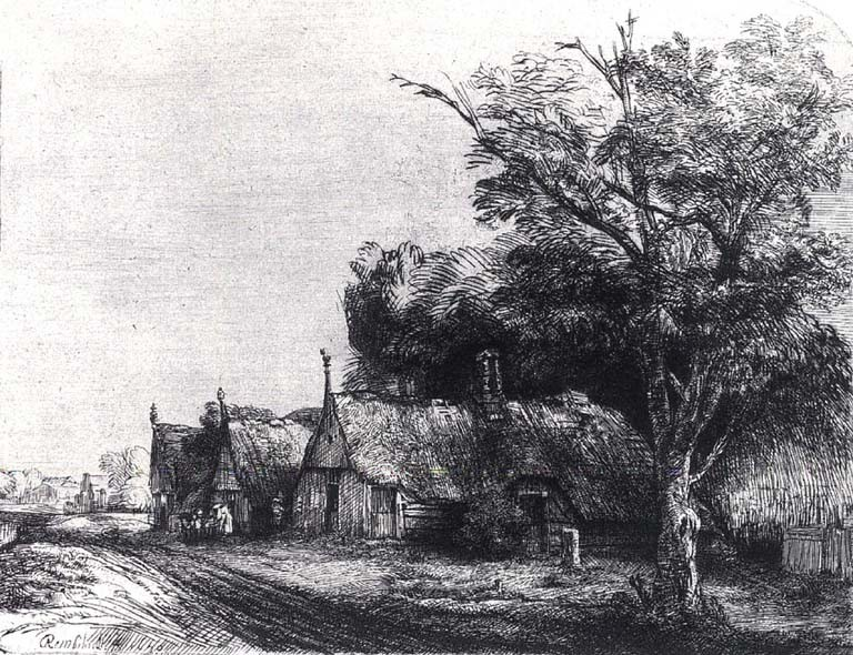 Rembrandt-Visipix-Pic0029_1024