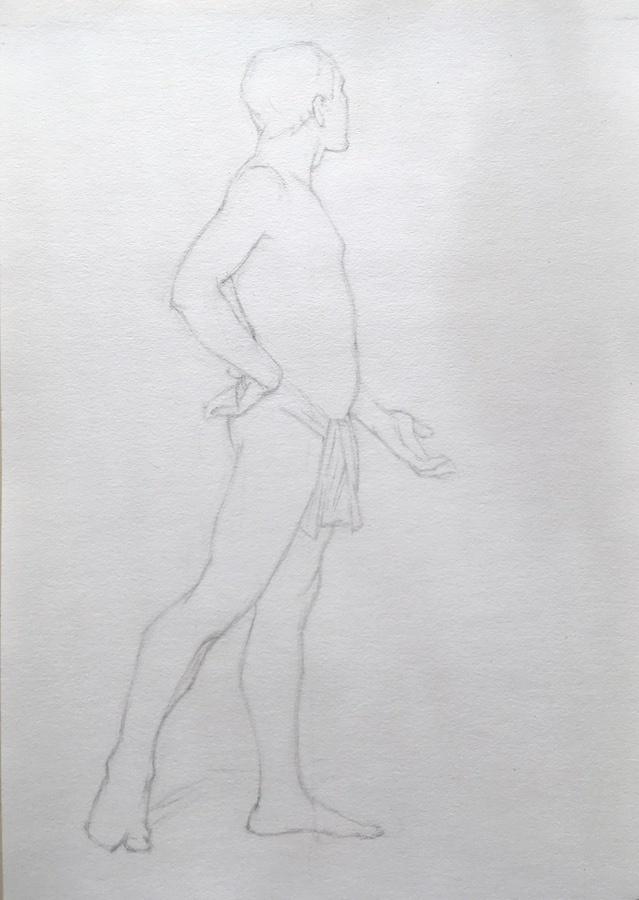 AnneL Planche III-27. Gerstaecker n°5, F. Castell 2H